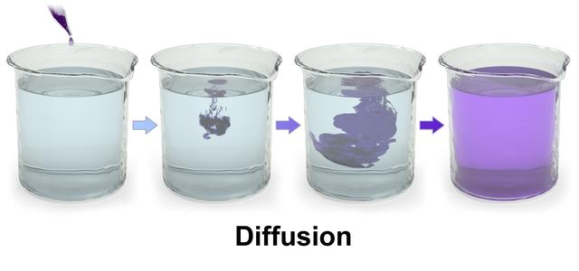 En droppe bläck som släpps ner i en bägare kommer att diffundera ut i hela lösningen, även om man inte rör om i den.
