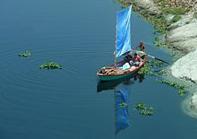 Small boat with a blue sail