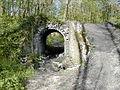 Bois de Colfontaine0015.JPG