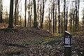 Bois de la Louvière - Livierenbos, Flobecq - Vloesberg 28.jpg