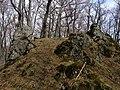 Bokšovské skaly - panoramio.jpg