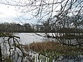 Bolam Lake Country Park - geograph.org.uk - 156445.jpg