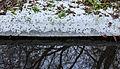 Bomijs boven stromend water. Locatie, Natuurterrein De Famberhorst 03.jpg