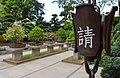 Bonsai Trees (218927971).jpeg