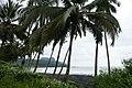 Bord de mer à Ribeira Peixe (São Tomé) (3).jpg