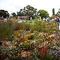 Botanic Garden walk.jpg