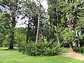 Botanischer Garten Freiburg - DSC06473.jpg