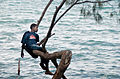 Boy in a Tree (Imagicity 143).jpg
