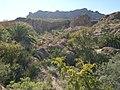 Boyce Thompson Arboretum, Superior, Arizona - panoramio (12).jpg