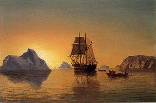 Scène arctique