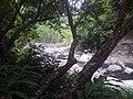 Bras des caverne - panoramio.jpg