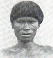 Brazilian American Indian Mongoloid.png
