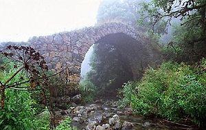 Bridge Kapan