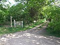 Bridleway into Holly Grove - geograph.org.uk - 440016.jpg