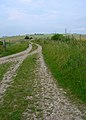 Bridleway to Truleigh Hill - geograph.org.uk - 497164.jpg