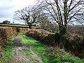 Broadmoor Lane - geograph.org.uk - 347550.jpg