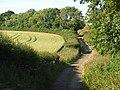Brown's Lane, Brightwalton - geograph.org.uk - 893454.jpg