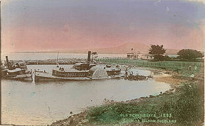 Browns Island (Auckland) - Abandoned paddle steamers and picnickers at Brown's Island in a 1908 postcard.