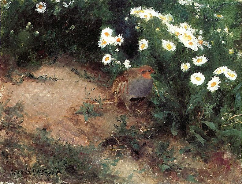 File:Bruno Liljefors - Partridge with Daisies.jpg