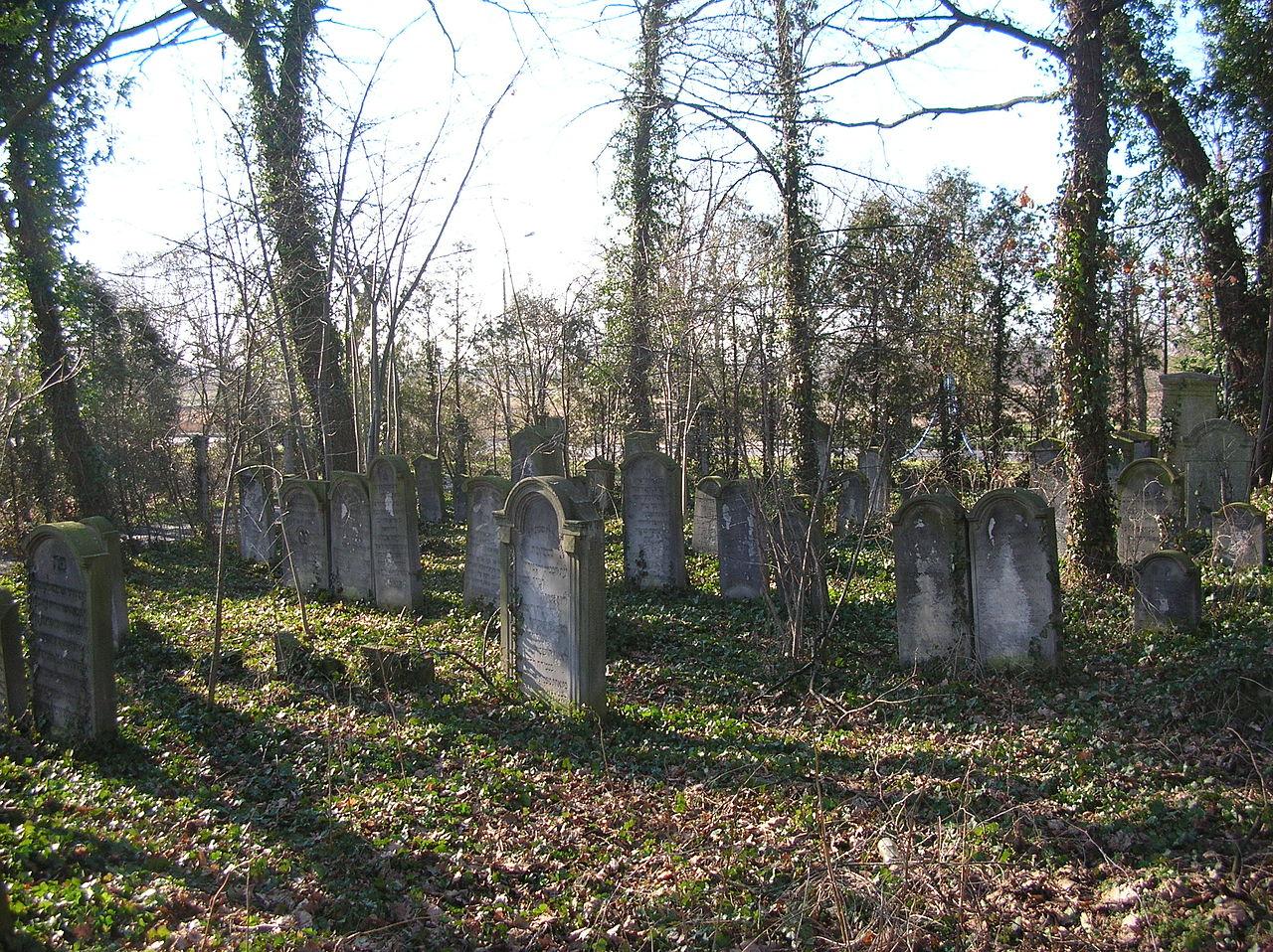 Brzeg-cmentarz-zydowski.jpg