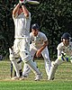 Buckhurst Hill CC v Dodgers CC at Buckhurst Hill, Essex, England 80.jpg
