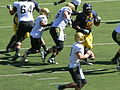 Buffaloes on offense at Colorado at Cal 2010-09-11 34.JPG