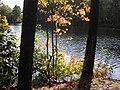 Buffumville Lake.JPG