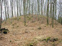 Burgstall Wagesenberg 2.jpg