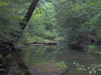Cumberland Mountain State Park - Byrd Creek, downstream from the dam