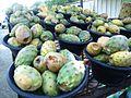 Cactus Fruit or barshoom.jpg