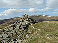 Cairn on Cauldstane Rig - geograph.org.uk - 1230699.jpg