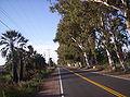 Calle Nacional en Dos Acequias, San Martín, San Juan, Argentina.jpg