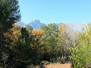 Camí Romeu-Montserrat.jpg
