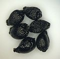 Camassia quamash seeds.JPG