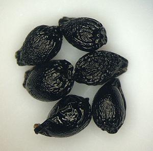 Camassia quamash - Image: Camassia quamash seeds