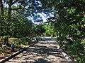 Caminando por el Parque Ecologico. - panoramio.jpg