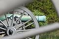 Cannon Battery Line.jpg