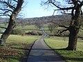 Caravan site road at Eastnor Park - geograph.org.uk - 650761.jpg