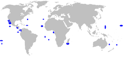 Range of galapagos shark