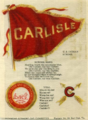 Carlisle Tobacco Cloth .png