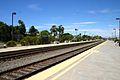 Carlsbad Poinsettia NCTD station14.jpg