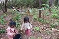 Cashew Nuts ernten mit Family Thong in Ratanakiri 03.JPG