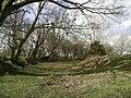 Castell Goetre - geograph.org.uk - 714642.jpg
