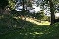 Castle gardens 1 - geograph.org.uk - 938840.jpg