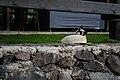 Cat in the grass of Hotel Rural Maipez 01.jpg