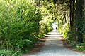 CeI 16 - Tranquilol paseo (13646654565).jpg