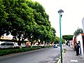 Centro, Tlaxcala de Xicohténcatl, Tlax., Mexico - panoramio (89).jpg