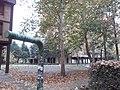 Cerak vinogradi (18.11.2018.), ulica Platana 07.jpg