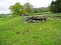 Chambered Cairn - geograph.org.uk - 170798.jpg