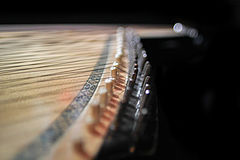 Chromatic and diatonic strings stretched over pegs on two levels, similar to black and white keys on a piano.